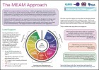MEAM Approach support